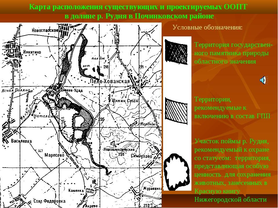 Карта расположения существующих и проектируемых ООПТ в долине р. Рудня в Почи...