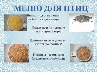 МЕНЮ ДЛЯ ПТИЦ Пшено – один из самых любимых видов пищи. Подсолнечник – дольно