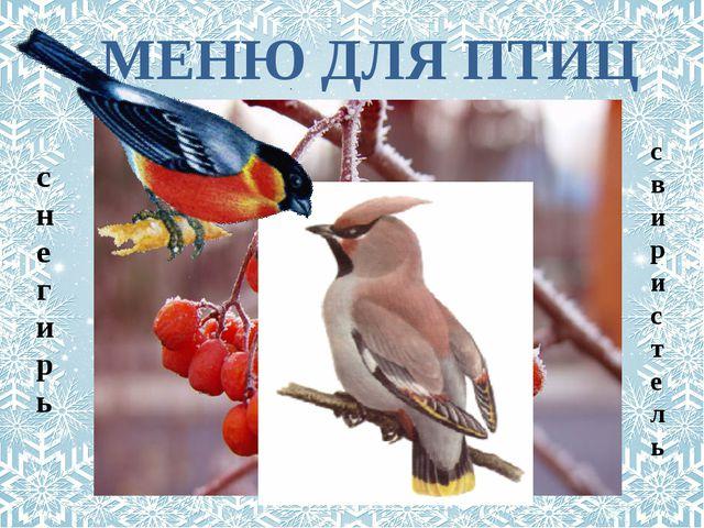 МЕНЮ ДЛЯ ПТИЦ свиристель снегирь