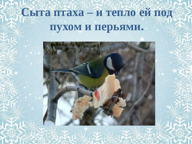 Сыта птаха – и тепло ей под пухом и перьями.