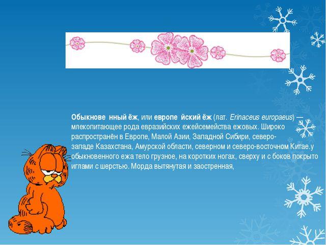 Обыкнове́нный ёж, илиевропе́йский ёж(лат.Erinaceus europaeus)— млекопита...