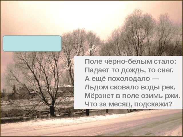 Поле чёрно-белым стало: Падает то дождь, то снег. А ещё похолодало — Льдом ск...