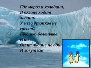 Где мороз и холодина, В океане ходит льдина. У него дружков не счесть, Брюшк