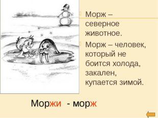 Морж – северное животное. Морж – человек, который не боится холода, закален,