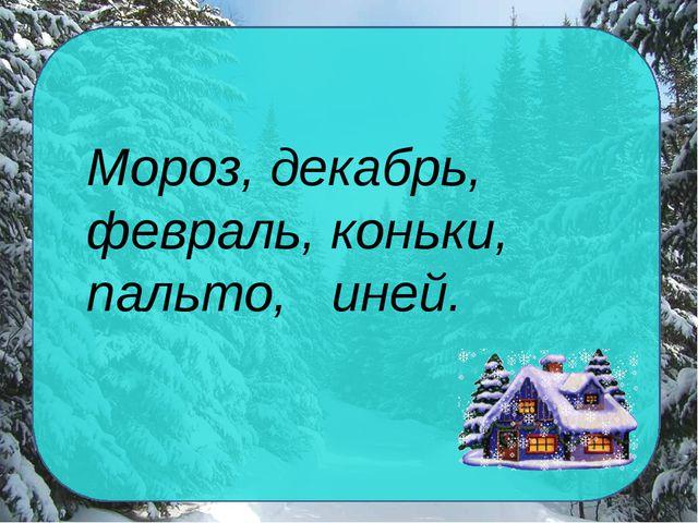 Мороз, декабрь, февраль, коньки, пальто, иней.