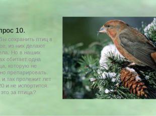 Вопрос 10. Чтобы сохранить птиц в музее, из них делают чучела. Но в наших лес