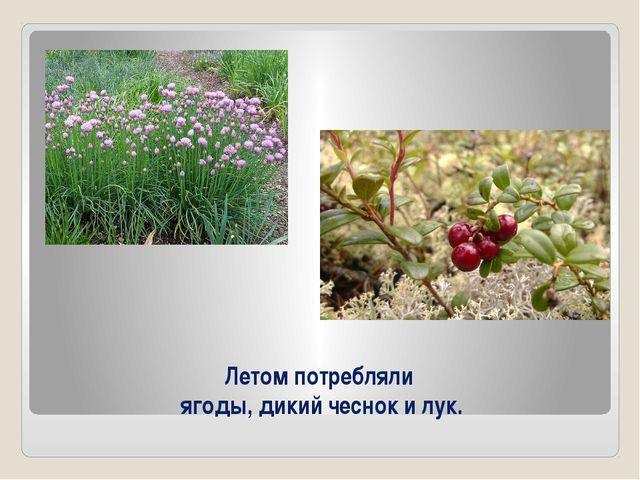 Летом потребляли ягоды, дикий чеснок и лук.