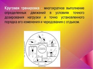 Круговая тренировка - многократное выполнение определенных движений в условия