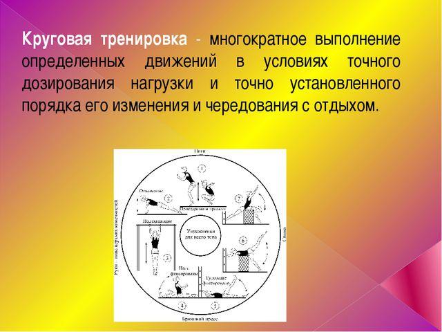 Круговая тренировка - многократное выполнение определенных движений в условия...