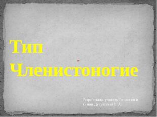 Тип Членистоногие Разработала: учитель биологии и химии Дугушкина В.А.
