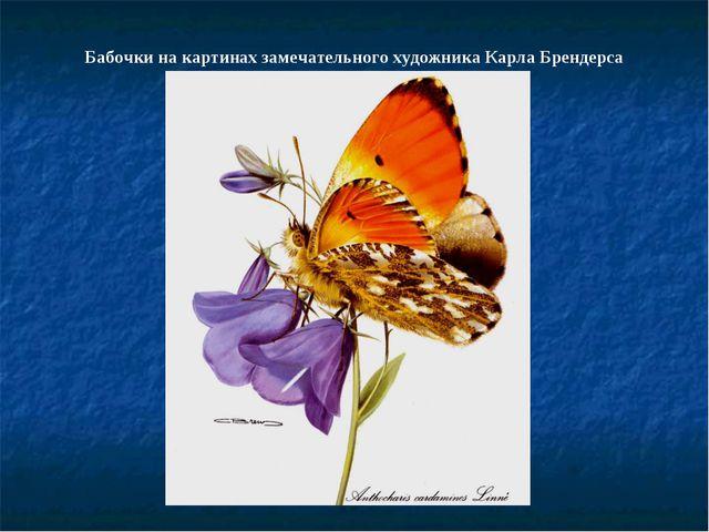 Бабочки на картинах замечательного художника Карла Брендерса