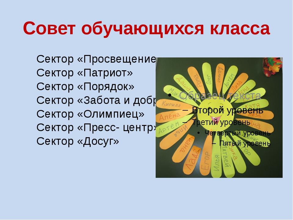 Совет обучающихся класса Сектор «Просвещение» Сектор «Патриот» Сектор «Порядо...