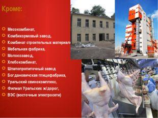 Кроме: Мясокомбинат, Комбикормовый завод, Комбинат строительных материалов, М