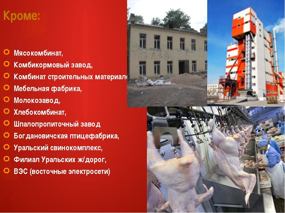 Кроме: Мясокомбинат, Комбикормовый завод, Комбинат строительных материалов, М...