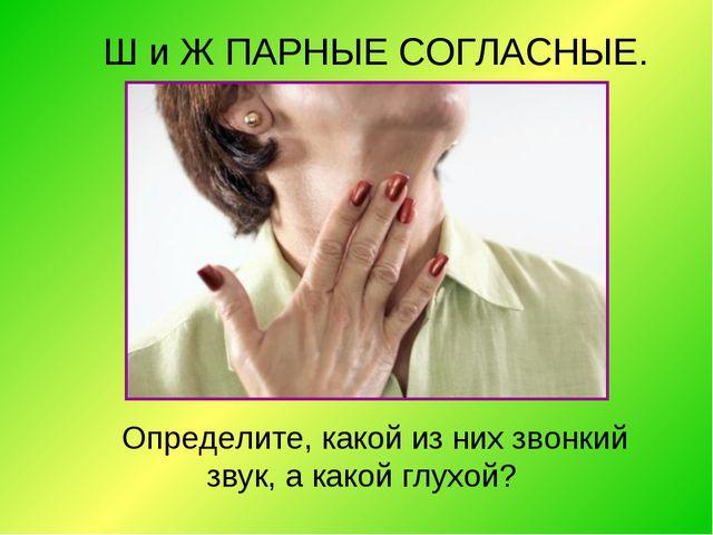 Ш и Ж ПАРНЫЕ СОГЛАСНЫЕ. Определите, какой из них звонкий звук, а какой глухой?