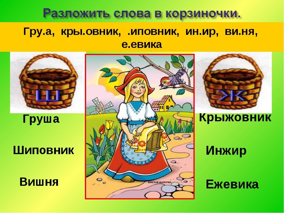 Груша Шиповник Вишня Крыжовник Инжир Ежевика Гру.а, кры.овник, .иповник, ин....