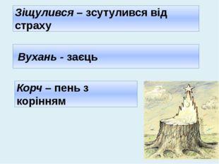 Вухань - заєць Зіщулився – зсутулився від страху Корч – пень з корінням