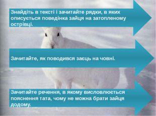Знайдіть в тексті і зачитайте рядки, в яких описується поведінка зайця на зат