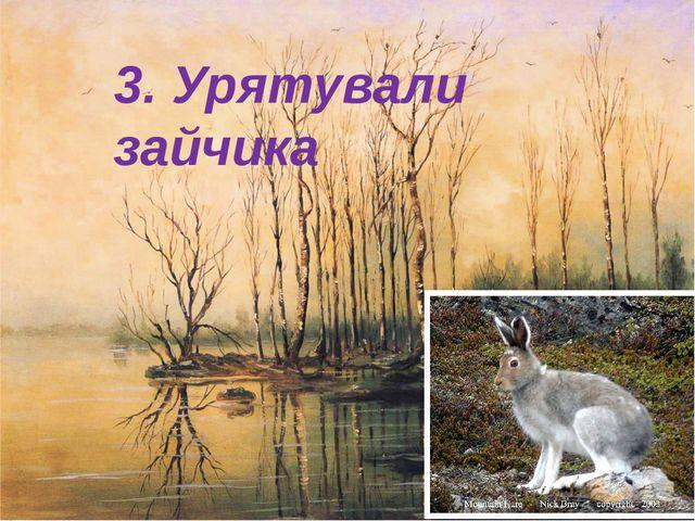 3. Урятували зайчика