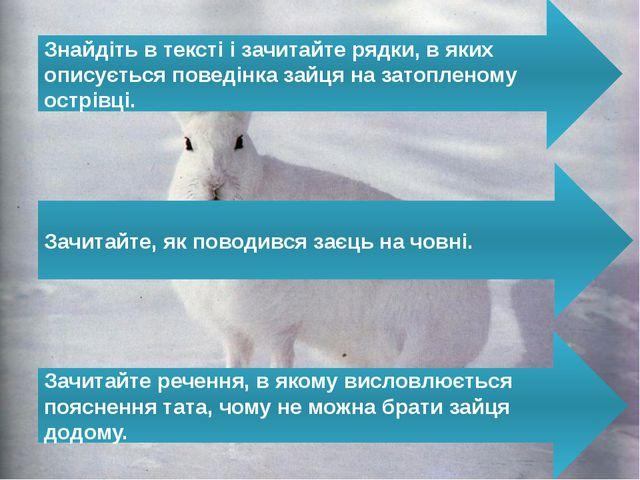 Знайдіть в тексті і зачитайте рядки, в яких описується поведінка зайця на зат...