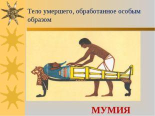 Тело умершего, обработанное особым образом МУМИЯ