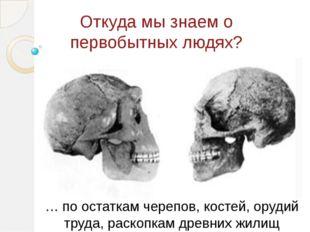 Откуда мы знаем о первобытных людях? … по остаткам черепов, костей, орудий тр