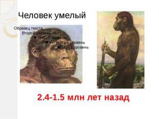 Человек умелый 2.4-1.5 млн лет назад Homo Habilis. Умели изготавливать примит