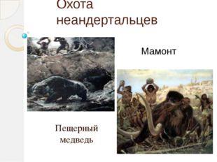 Охота неандертальцев Пещерный медведь Мамонт Умели охотиться на крупных живот
