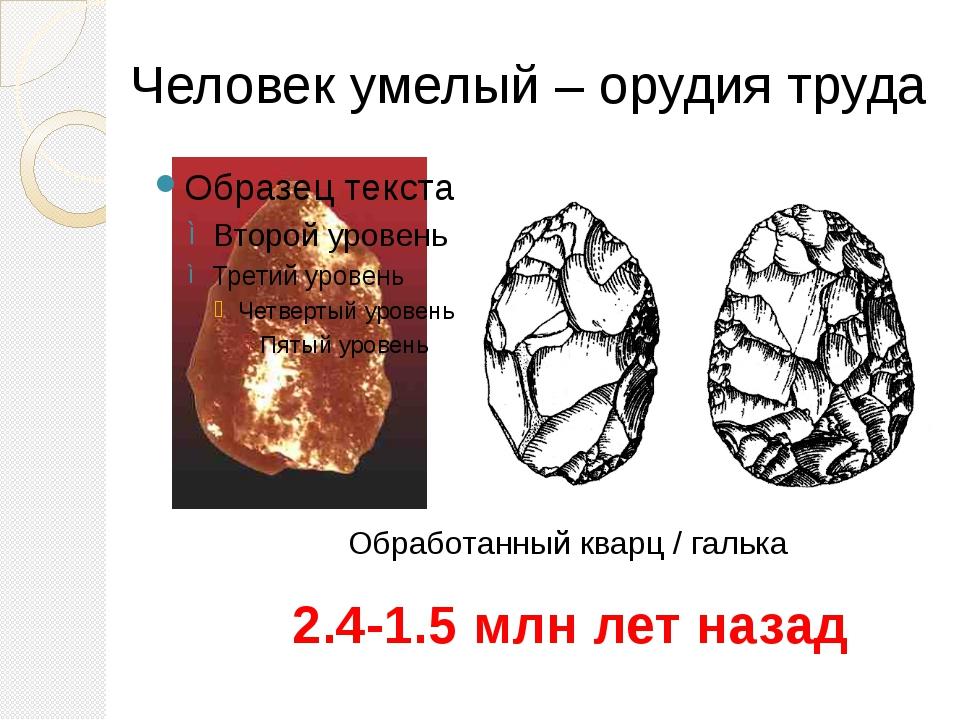 Человек умелый – орудия труда 2.4-1.5 млн лет назад Обработанный кварц / галь...