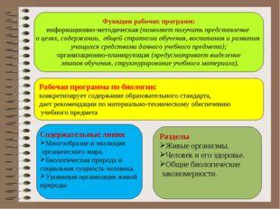 Функции рабочих программ: информационно-методическая (позволяет получить пред