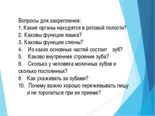 Домашнее задание:(вариативное):параграф, читать, отвечать на вопросы в конце