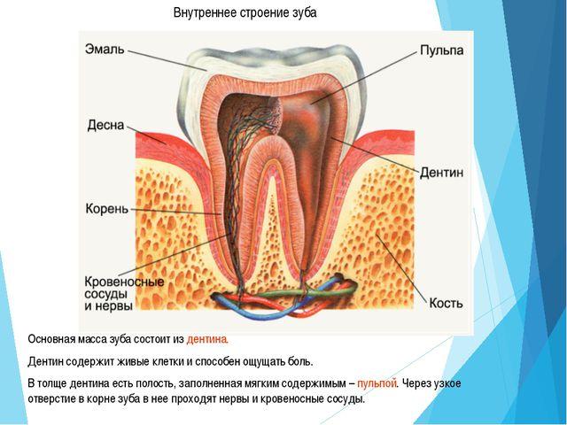 Зубы, как и глаза, кожа, волосы, могут многое поведать о здоровье человека.