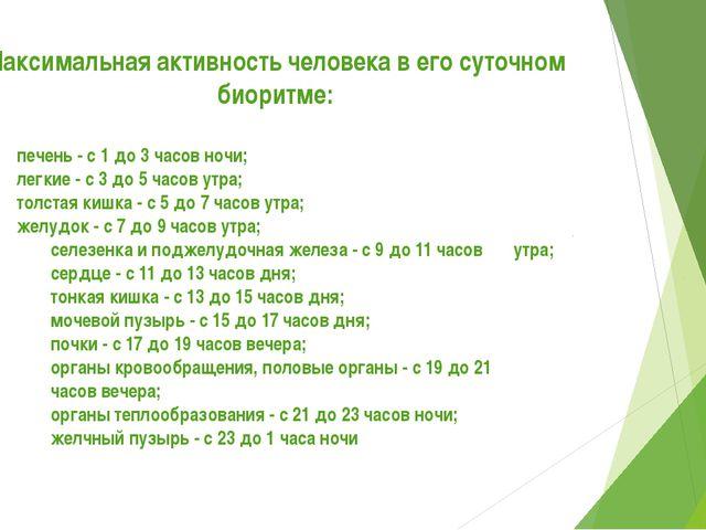 Максимальная активность человека в его суточном биоритме: •печень - с 1 до 3...