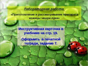 Лабораторная работа «Приготовление и рассматривание препарата кожицы чешуи лу