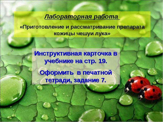 Лабораторная работа «Приготовление и рассматривание препарата кожицы чешуи лу...