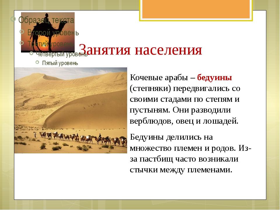 Занятия населения Кочевые арабы – бедуины (степняки) передвигались со своими...