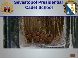 Sevastopol Presidential Cadet School
