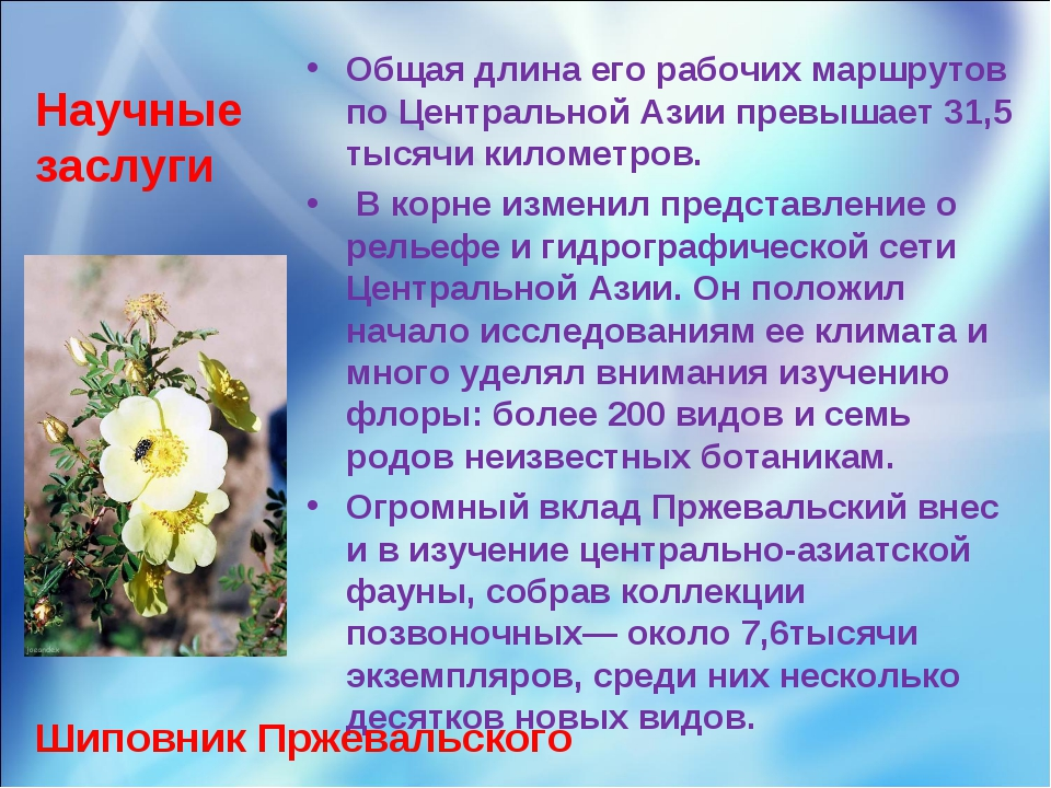 Научные заслуги Общая длина его рабочих маршрутов по Центральной Азии превыша...