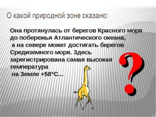 О какой природной зоне сказано: Она протянулась от берегов Красного моря до п