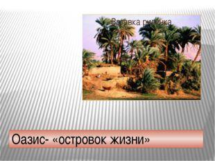 Оазис- «островок жизни»
