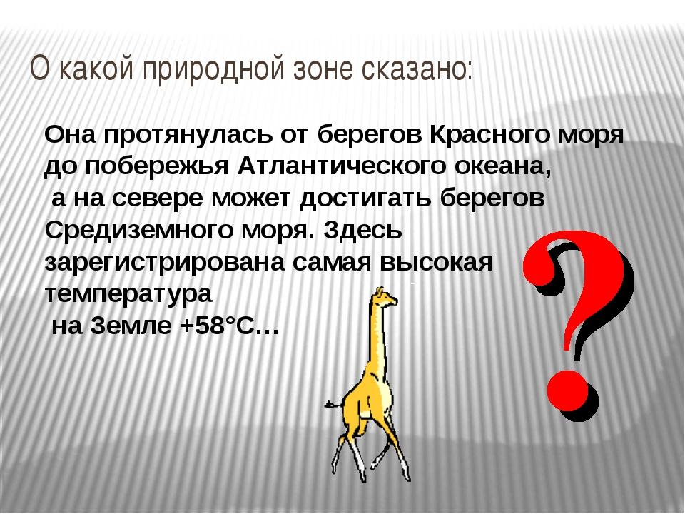 О какой природной зоне сказано: Она протянулась от берегов Красного моря до п...