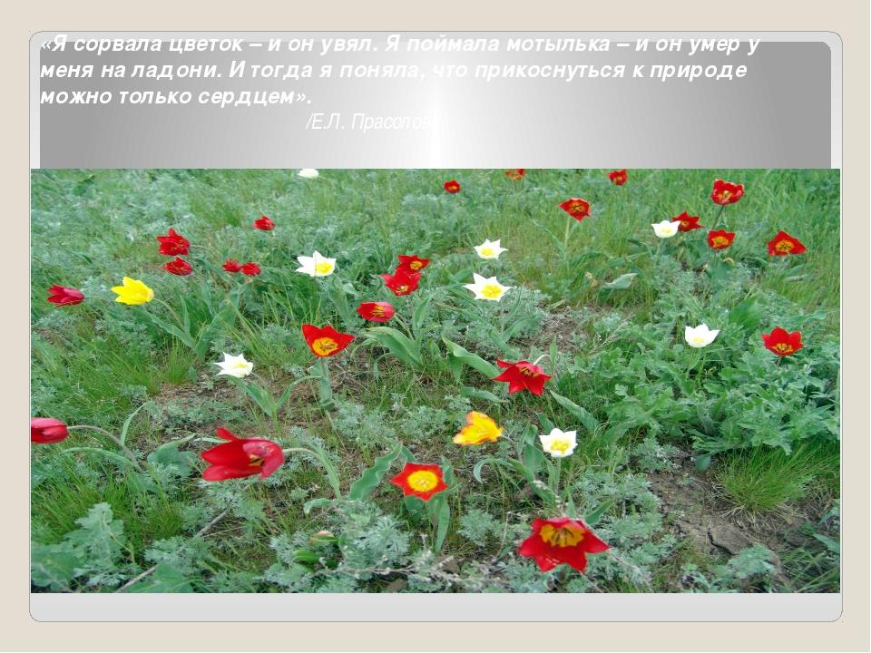 «Я сорвала цветок – и он увял. Я поймала мотылька – и он умер у меня на ладон...