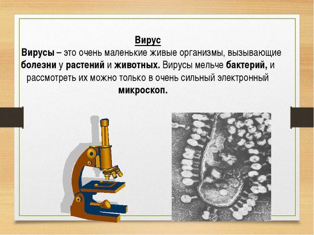 Вирус Вирусы – это очень маленькие живые организмы, вызывающие болезни у раст...