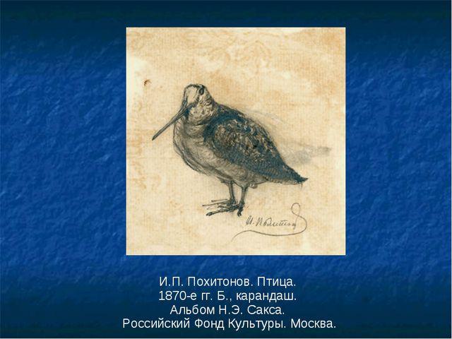 И.П. Похитонов. Птица. 1870-е гг. Б., карандаш. Альбом Н.Э. Сакса. Российски...