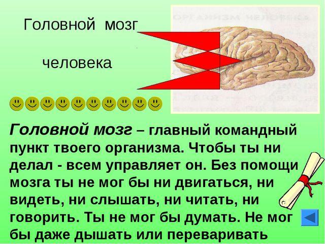 Головной мозг – главный командный пункт твоего организма. Чтобы ты ни делал -...