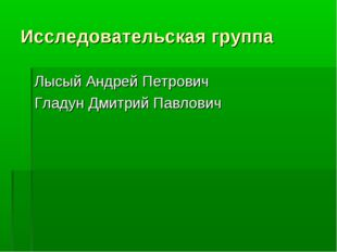 Исследовательская группа Лысый Андрей Петрович Гладун Дмитрий Павлович