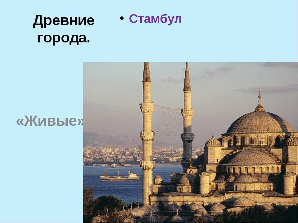 Древние города. Стамбул «Живые»