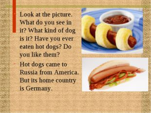 Look at the picture. What do you see in it? What kind of dog is it? Have you