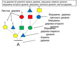 А На дереве М укажите корень дерева, вершины первого уровня, вершины второго