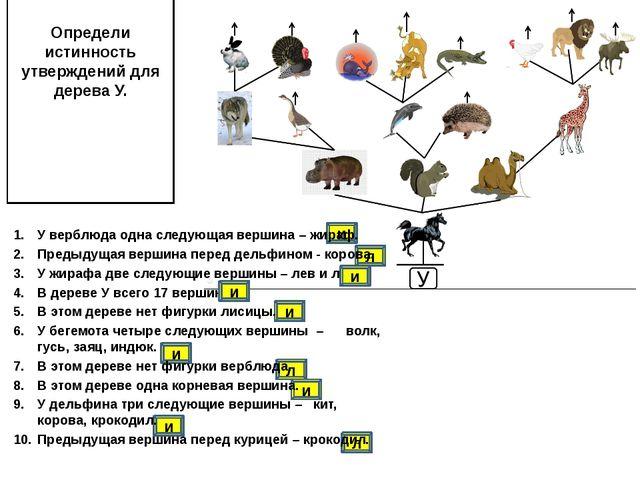 Определи истинность утверждений для дерева У. и и л и л и и л У верблюда одна...